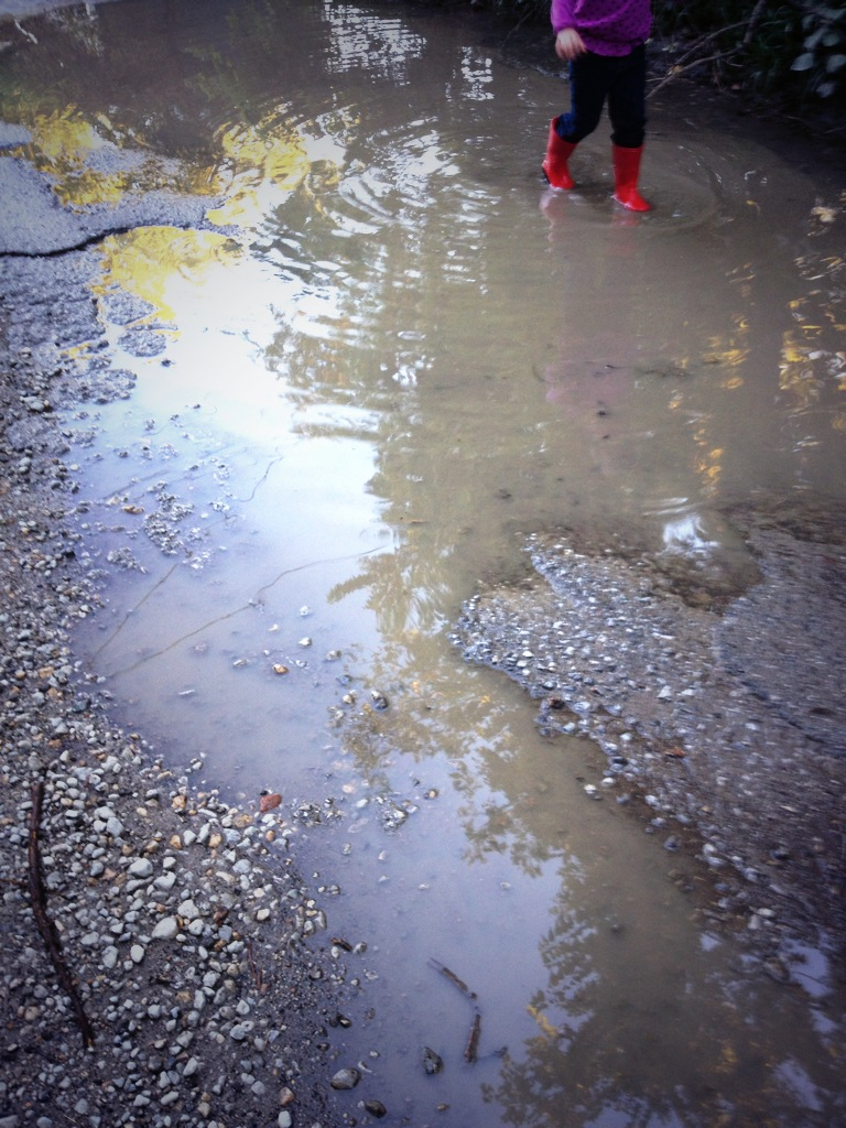 Evening puddle walk