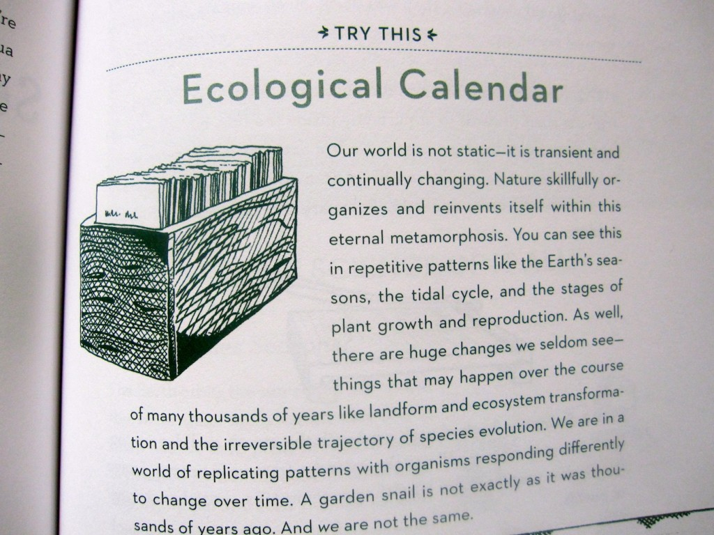 This Book Was a Tree 1
