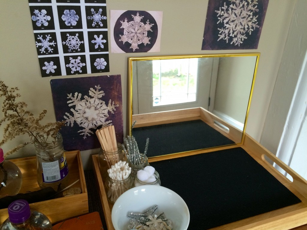 Snowflake Home Activity