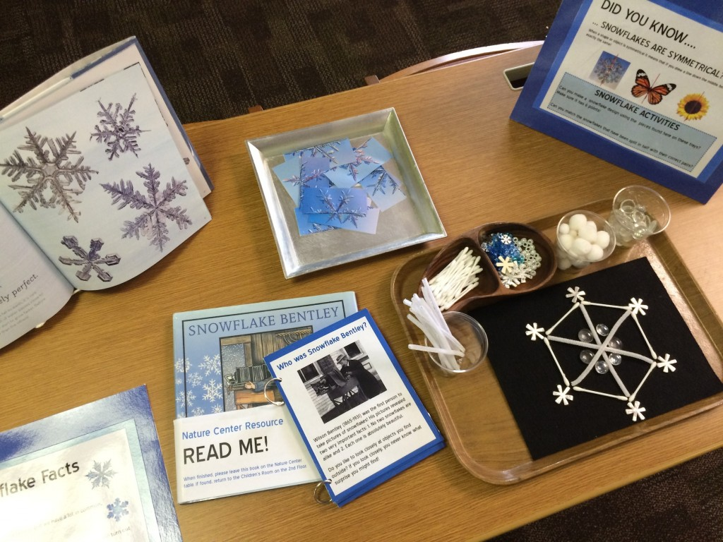 Snowflake Activity Center