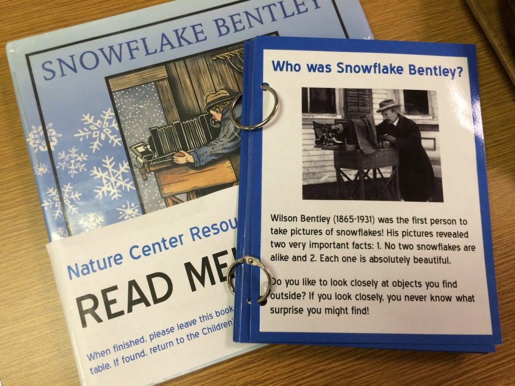 Snowflake Bently Activity