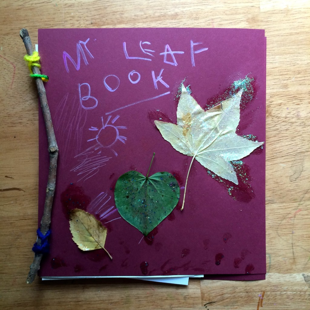 Tree Identification for Kids My Leaf Book