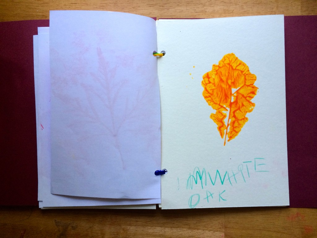 How to make a leaf book 11