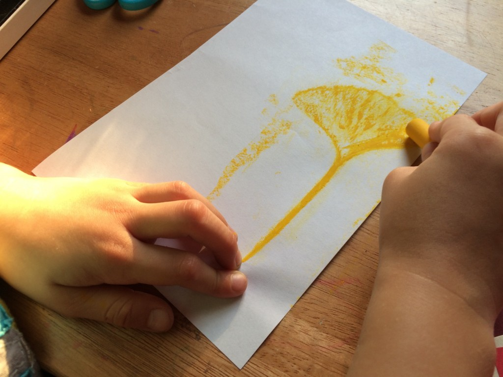 Leaf Rubbings 1