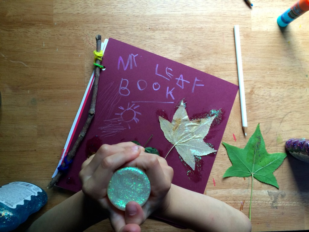 how to make a leaf book 8