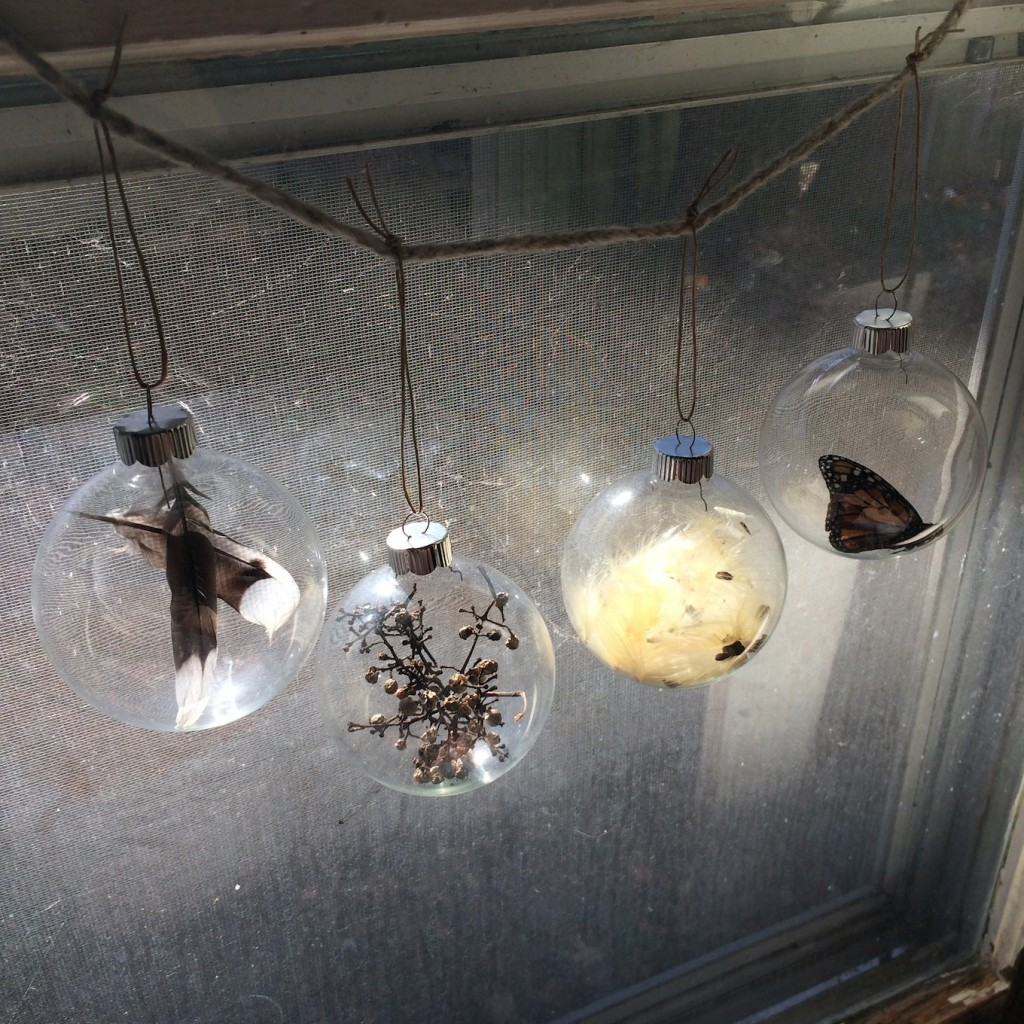 Nature Orbs Provocation