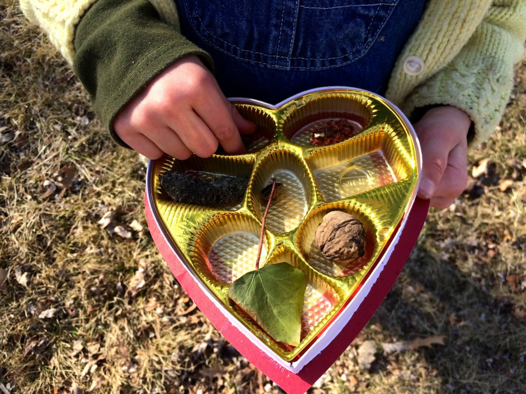 Collecting natural tresures in a repurposed chocolate box - A sweet activity for the great outdoors