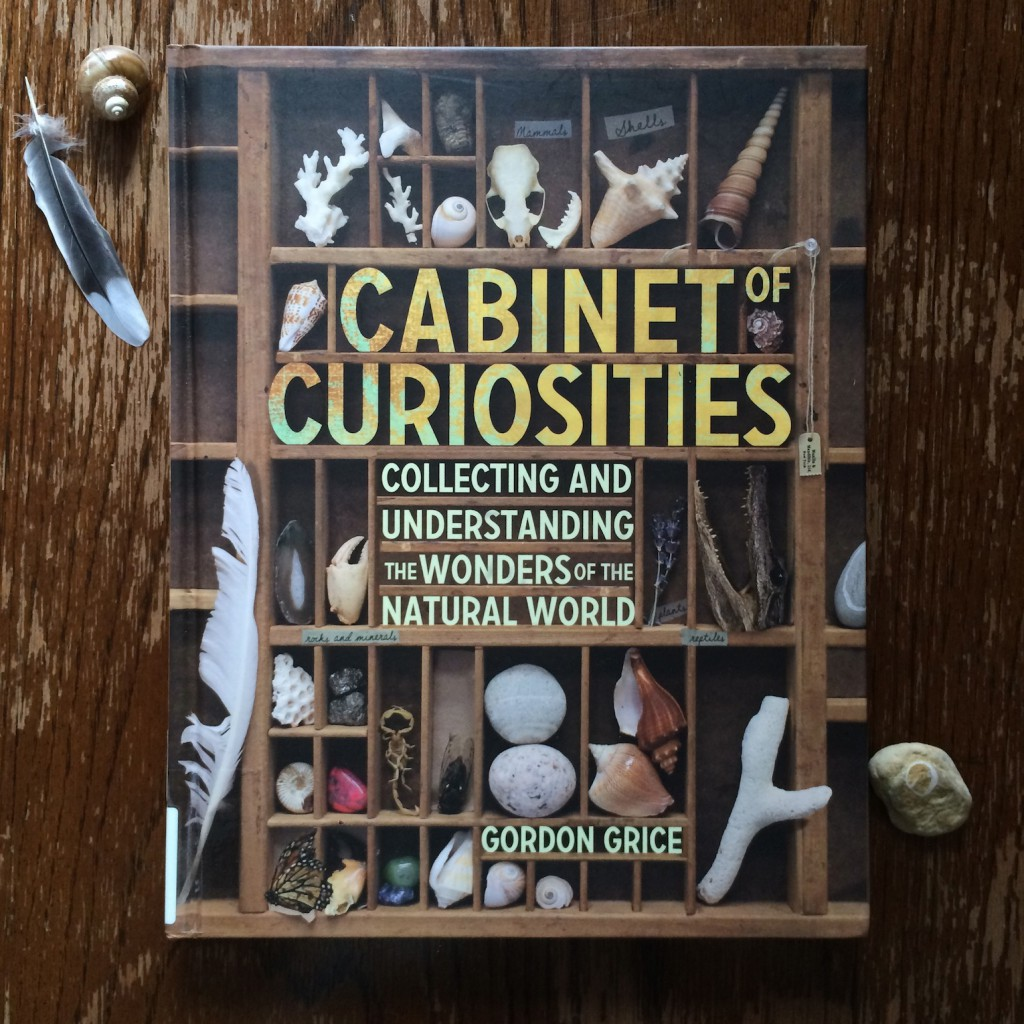 Cabinet of Curiosities Collecting and Understanding the Wonders of the Natural World by Gordon Grice