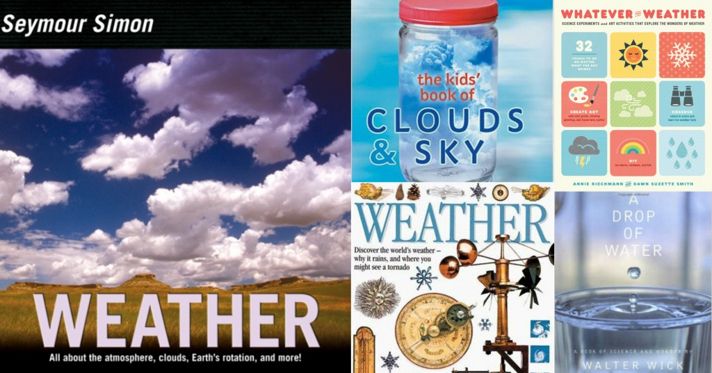 weather books for older readers