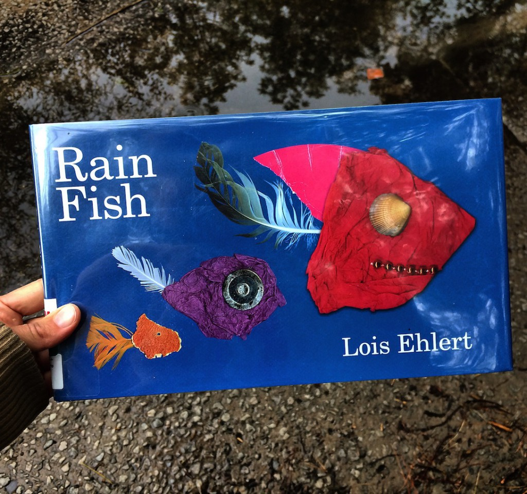 In this rhyming adventure of debris that comes out to play on a rainy day, RAIN FISH by Lois Elhert is a lively story meshing art and nature