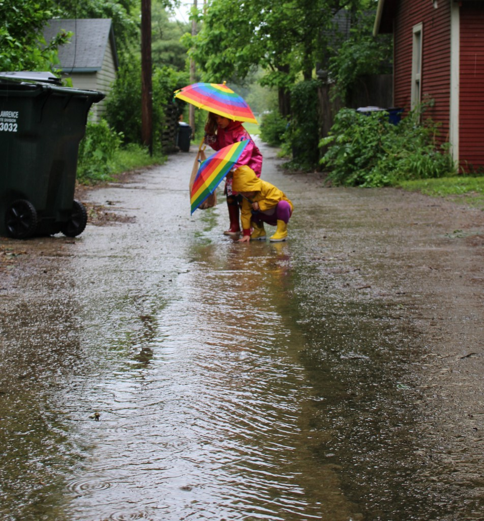Looking for Rain Fish, a rainy day activity that promts kids to use their imagination and repurpose litter