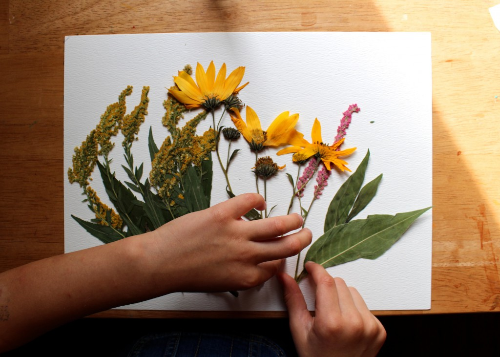 end of summer nature project for children flower pressing