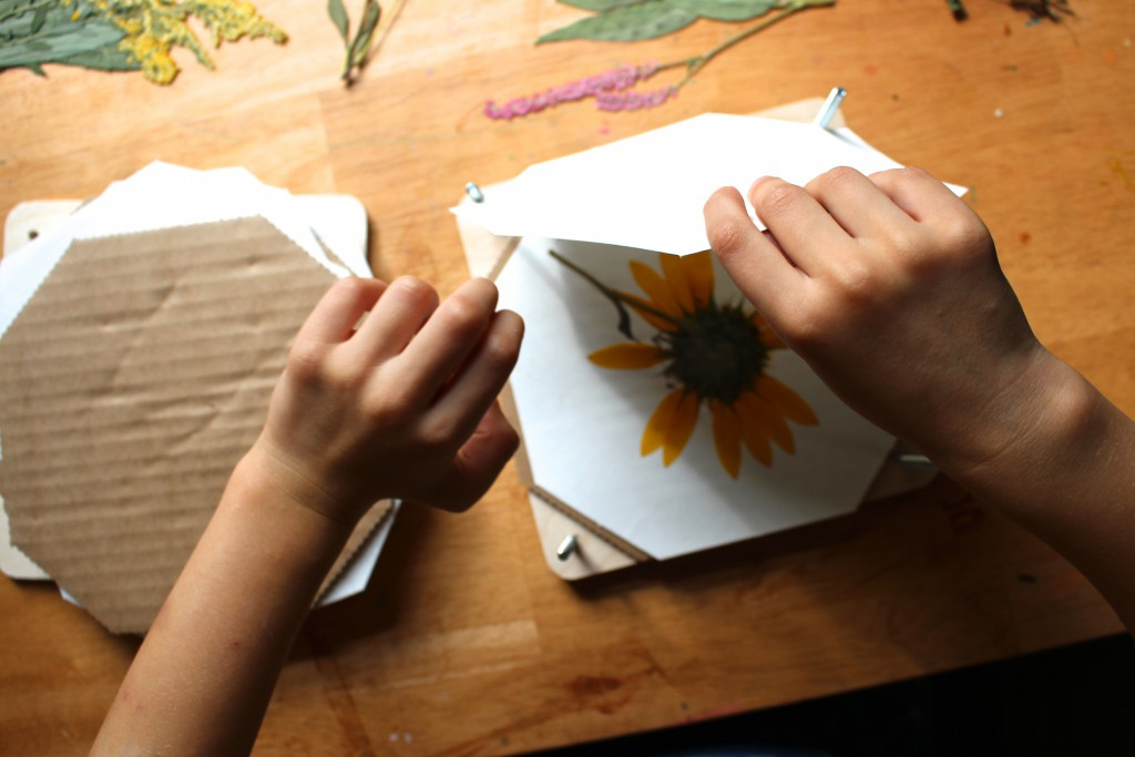 flower pressing craft