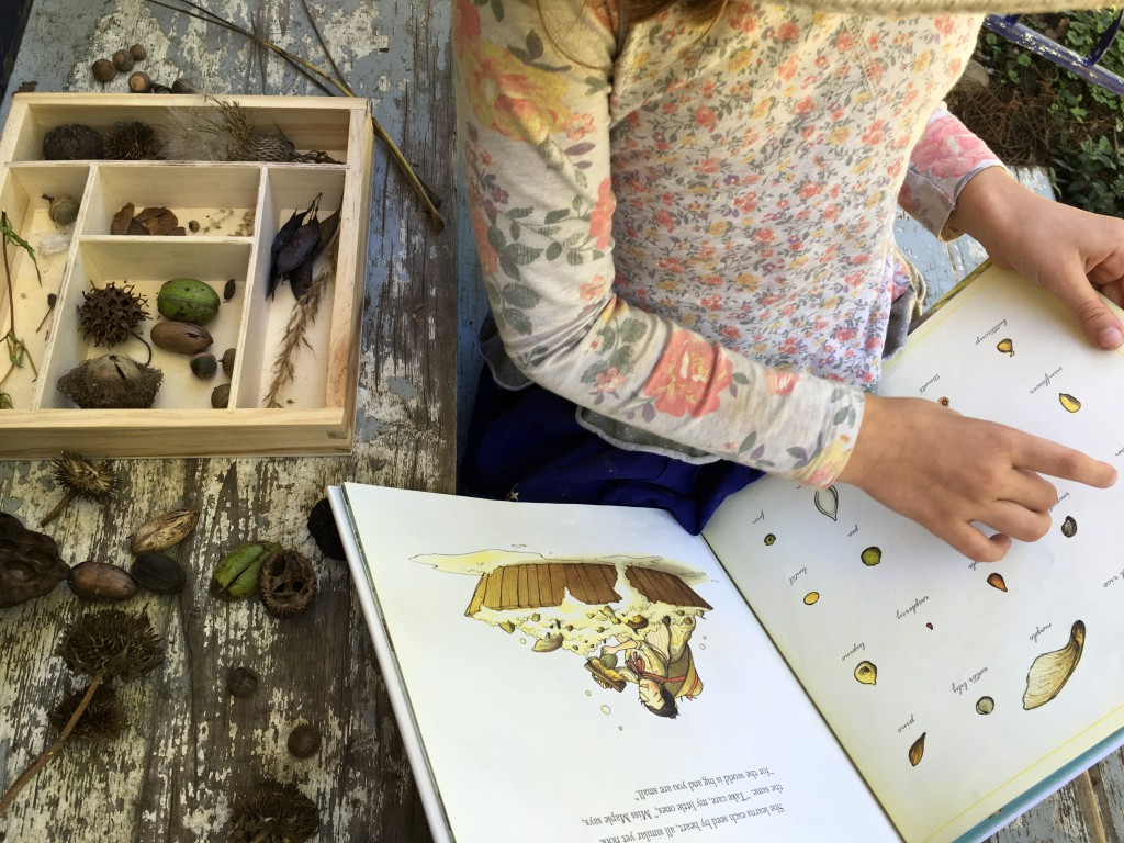 Autumn seed finding nature activity for kids