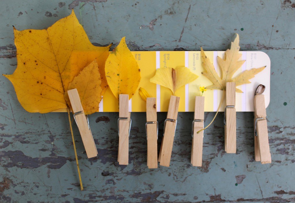 Yellow Time nature activity for kids - Using a paint swatch, find different hues of yellow found outdoors