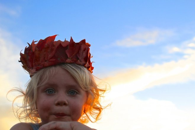 autumn sunset leaf crown