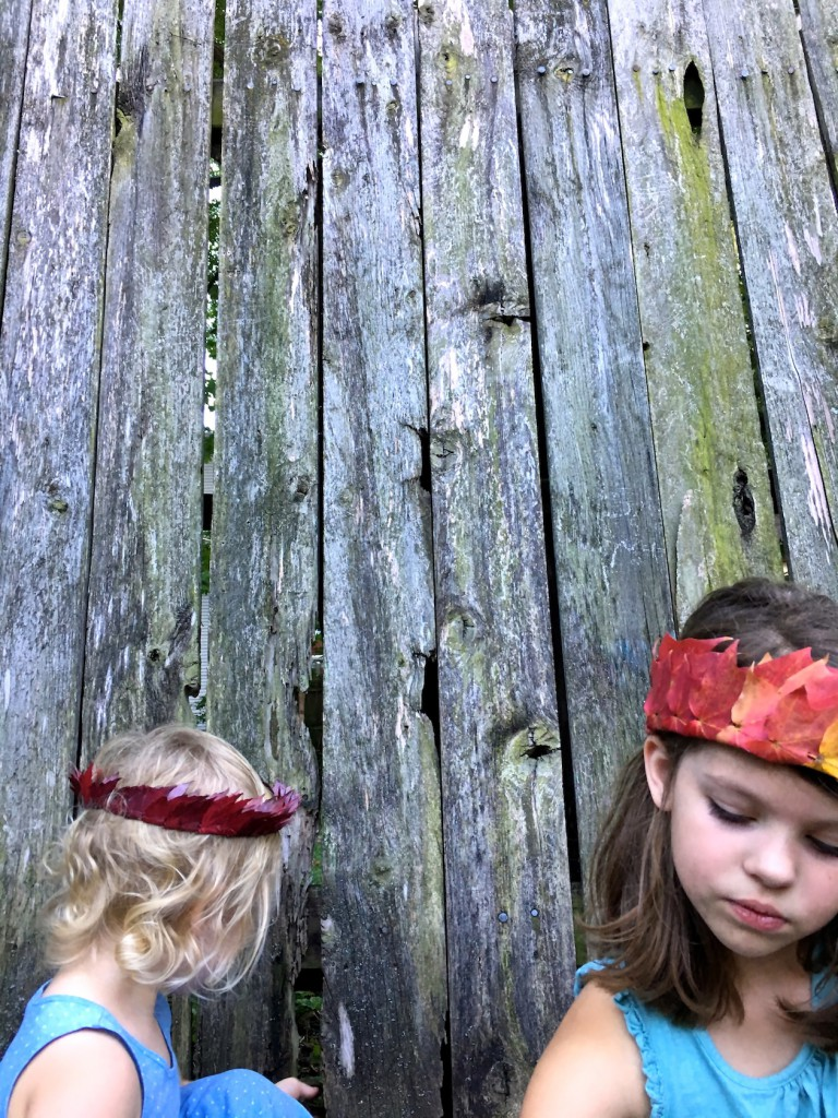 leaf crowns autumn nature activity